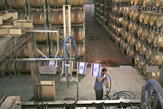 Fra vinkjelleren hos Golan Heights Winery