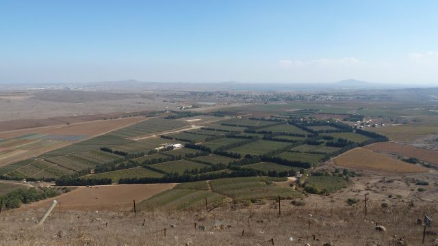 Vinmarker på Golanhøyden, bostavelig talt på grensen til Syria. De hvite bygningene til venstre er brakker for FN-personell som overvåker den demilitariserte sonen.